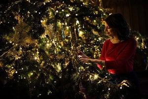 歐洲聖誕樹從哪來?格魯吉亞小孩冒險採種