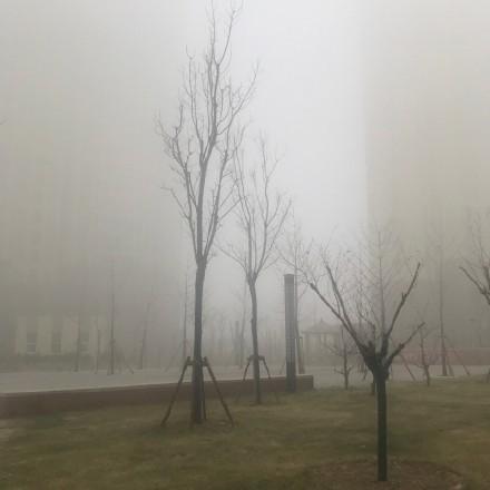 大陸陰霾再度捲土重來,各地「霾情」不斷。(圖為12月29日北京網民發佈的空氣污染圖片)
