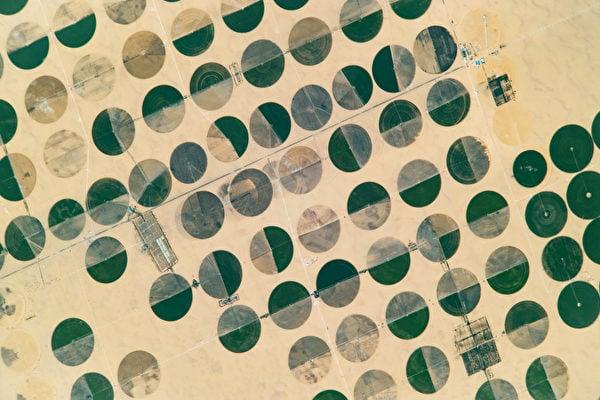 太空人從國際太空站上拍到埃及沙漠中的綠色圓圈,這一個個圓圈其實是農田。(NASA)