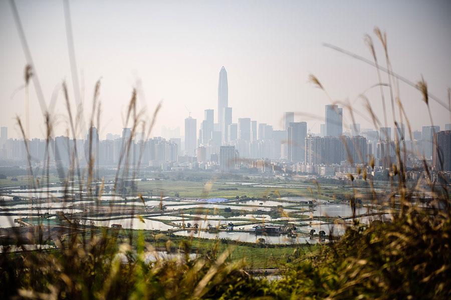 圖為從香港邊境眺望深圳市。(ANTHONY WALLACE/AFP/Getty Images)