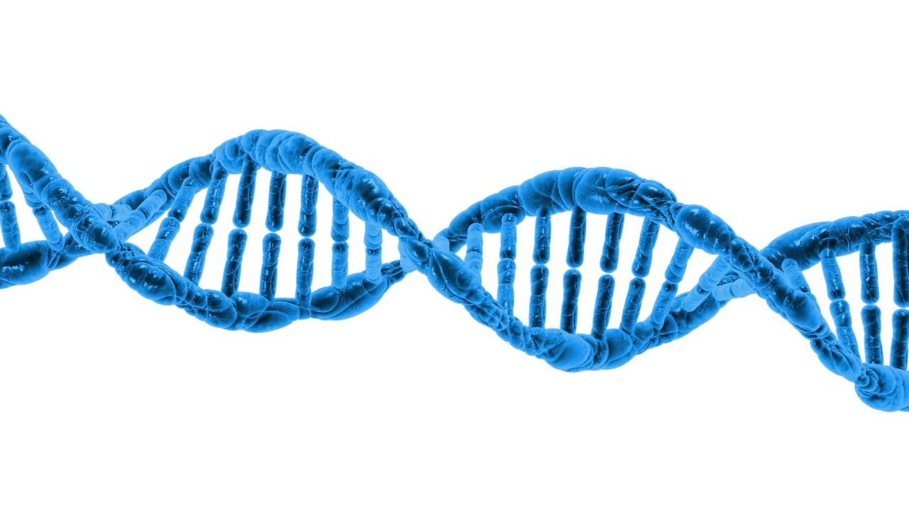 美媒稱,把個體DNA信息與實時監控工具相結合,中共將建立一個無孔不入的數碼化集權國家。(Pixabay)