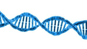 中共打造全球最大DNA數據庫:全方位監控