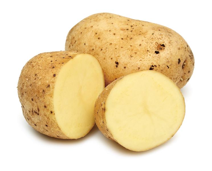 改變生命的食物被誤解的薯仔