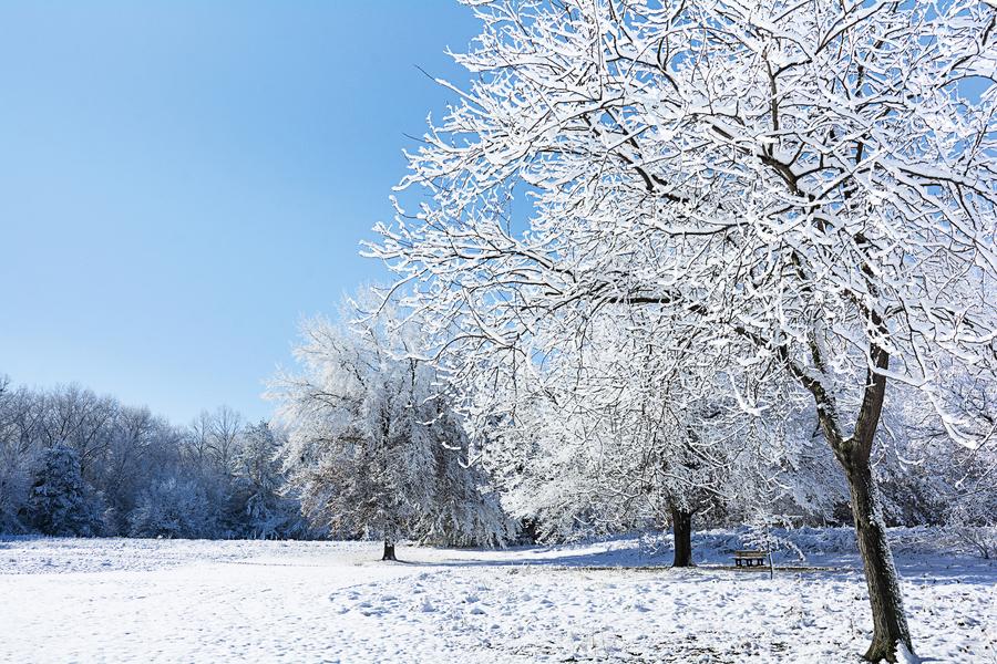 三九補一冬 來年無病痛 小寒養生須省鹹增苦