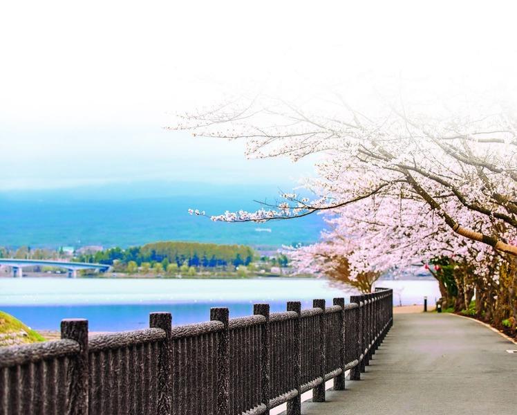 東京,一期一會 每段相遇,都是邁向憧憬未來的養份。(下)