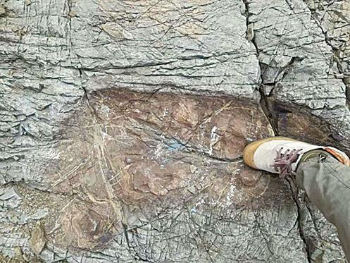 玻利維亞驚見巨大腳印 或史前巨人所留