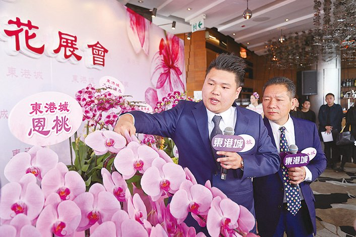 蘭花大王楊小龍(右)及其兒子楊尹俊介紹新品種蘭花「恩桃」。(余鋼/大紀元)