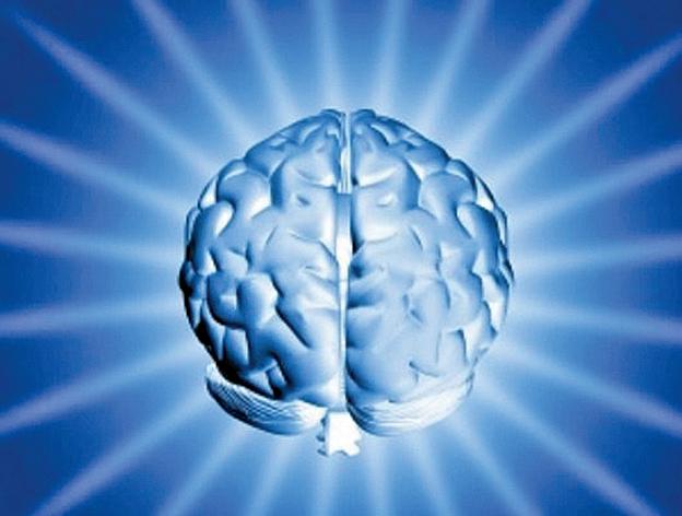 大腦的一些區域和道德有關。(Flickr)