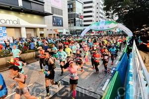 渣打馬拉松明日開鑼 特別交通及天氣情報