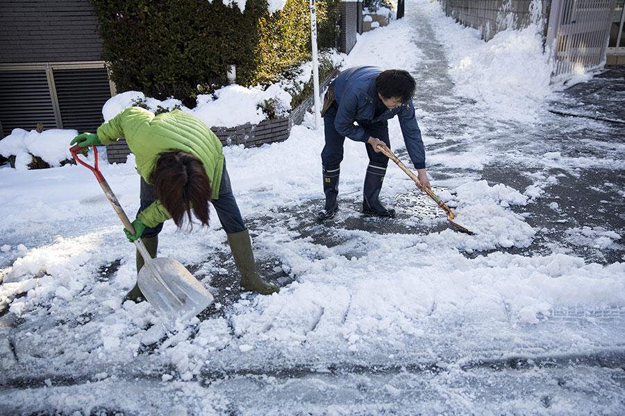 22日,日本氣象廳對東京發出4年來首個大雪警報,23日凌晨已解除大雪警報。(AFP PHOTO/Behrouz MEHRI)