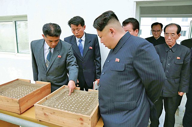 韓媒:金正恩以武力統一意志沒變