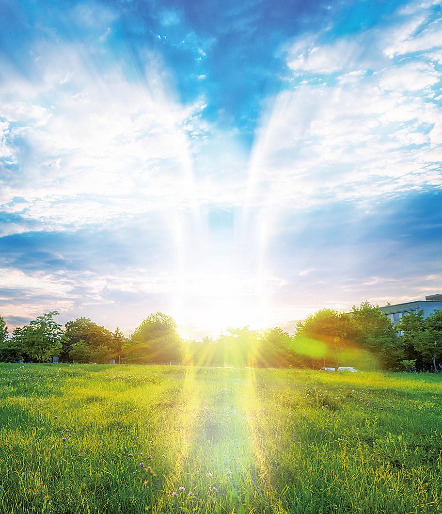 在秋季,夕陽光芒照亮下,呈現出天使景象的美麗背景(fotolia)