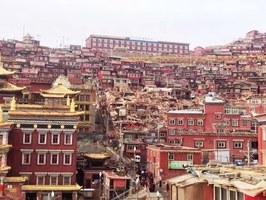 人權組織:中共管控西藏喇榮寺佛學院