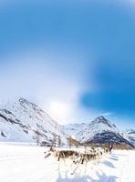 世界級雪橇狗大賽 法國雪景美不勝收