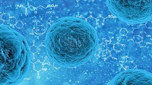 快速「生產」幹細胞 益疾病治療