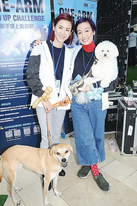 江美儀(右)帶著兩隻愛犬一同出席活動。(網絡圖片)
