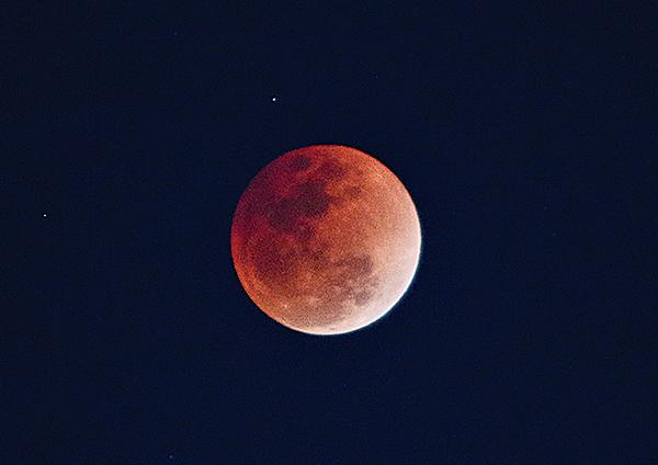 152年才得一見的天文現象「超級藍血月」昨日登場。(陳仲明/大紀元)