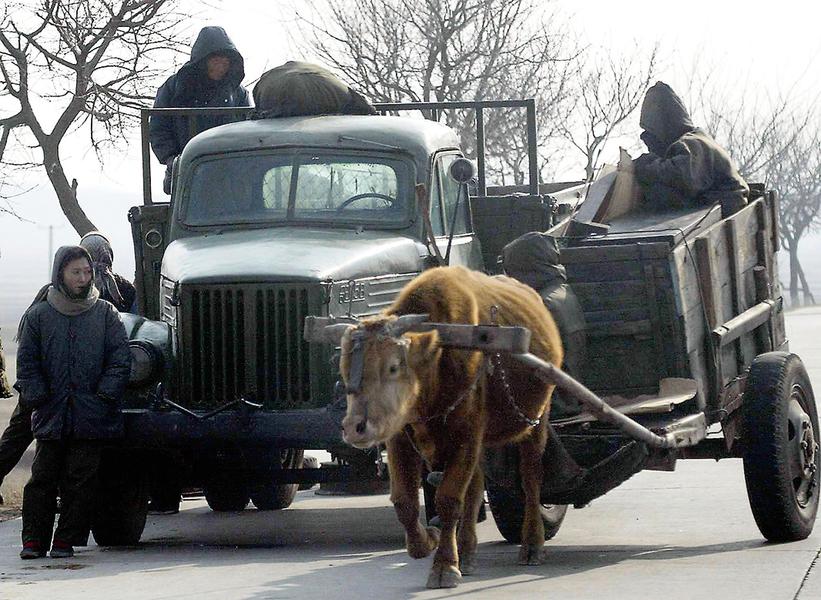 北韓士兵棄卡車改用牛車