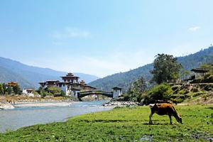 不丹養身 從養心開始