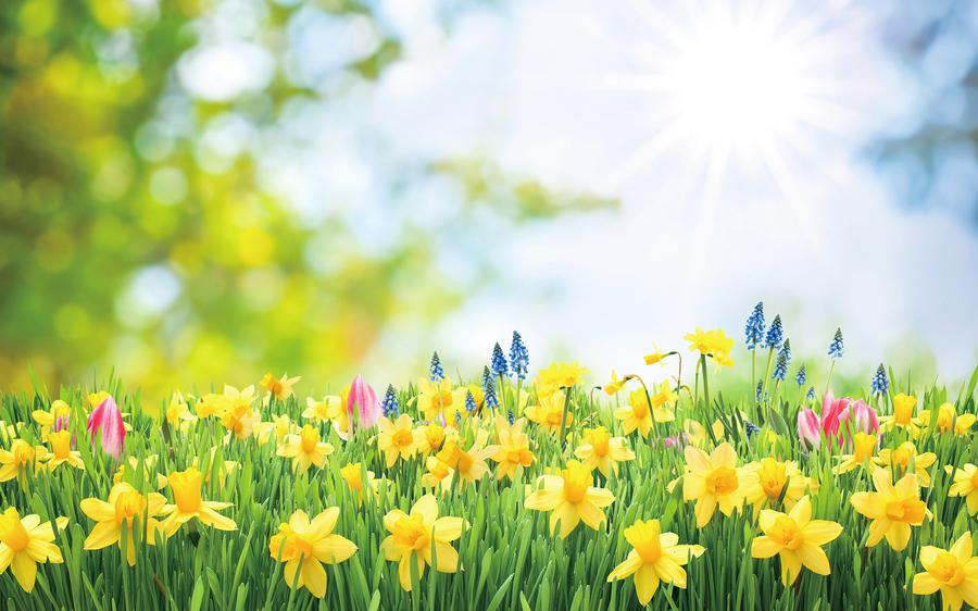 古代「春節」指立春  生肖應從立春算起