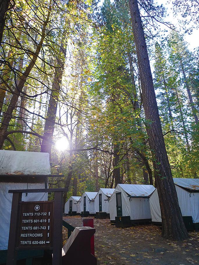 清晨時分的Camp Curry。