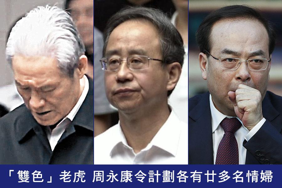 中共官媒披露,落馬老虎周永康(左)、令計劃(中)、孫政才(右)是「雙色」老虎的典型。(視像擷圖、Lintao Zhang/Getty Images/大紀元合成圖)