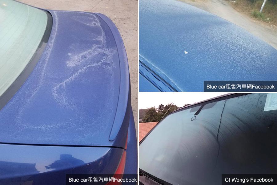多位網民在網上張貼相片,表示停泊中的汽車亦鋪上一層薄霜。(Blue car租售汽車網Facebook、Ct Wong's Facebook)