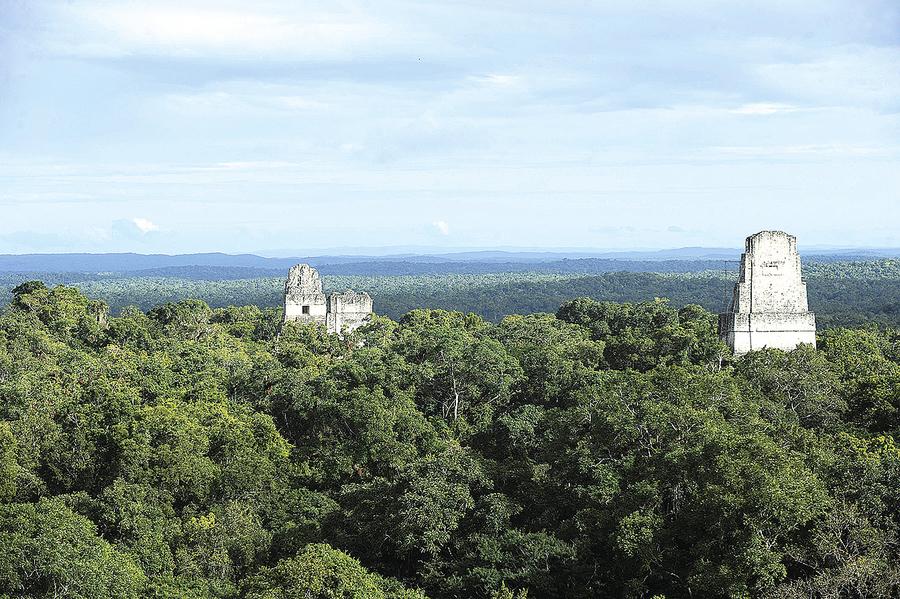 瑪雅古城藏身叢林 人口規模驚呆專家