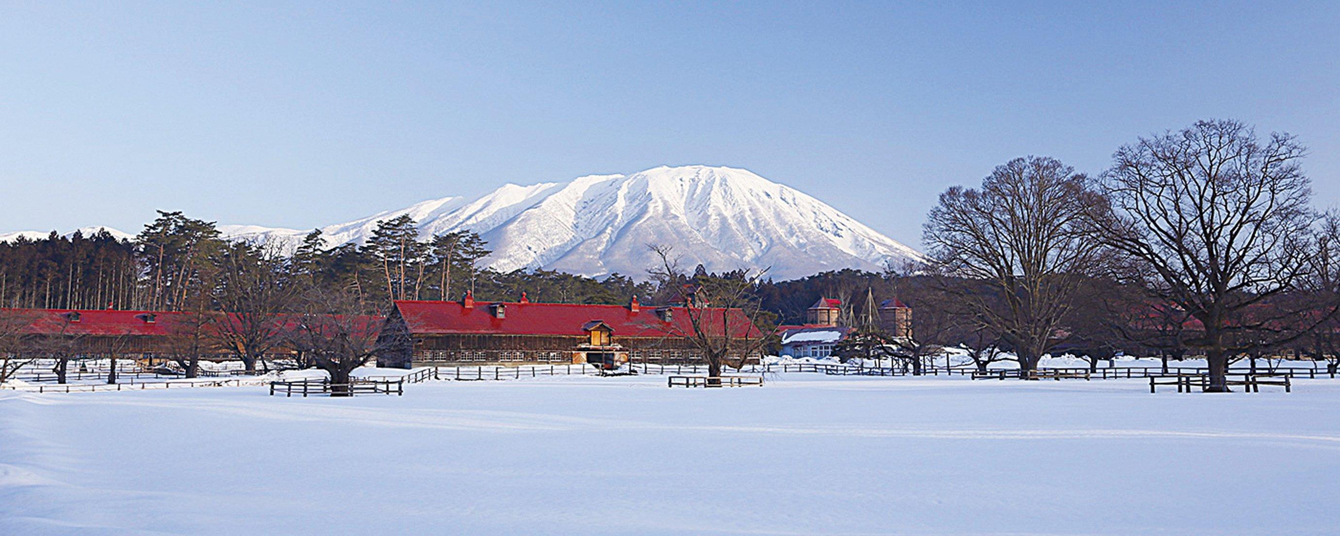 小岩井農場的雪景。(小岩井農場官網)