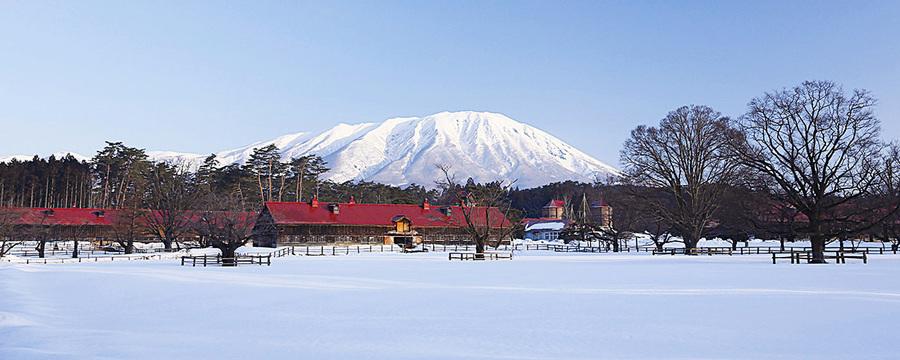 日本東北遊 雪國體驗之一 小岩井農場篇