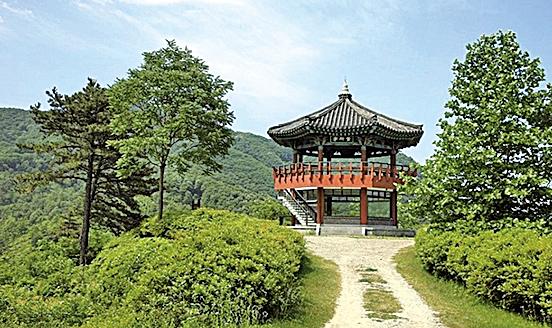 錦江自然休養林