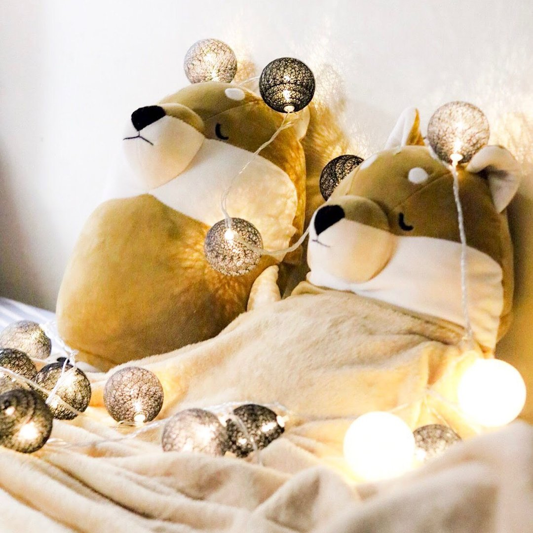 在寒冷的天氣下想留在被窩中渡過?這隻柴犬公仔打開後可變成一張被,寒冷時蓋著保暖,平日則可作為攬住可愛的柴犬公仔。