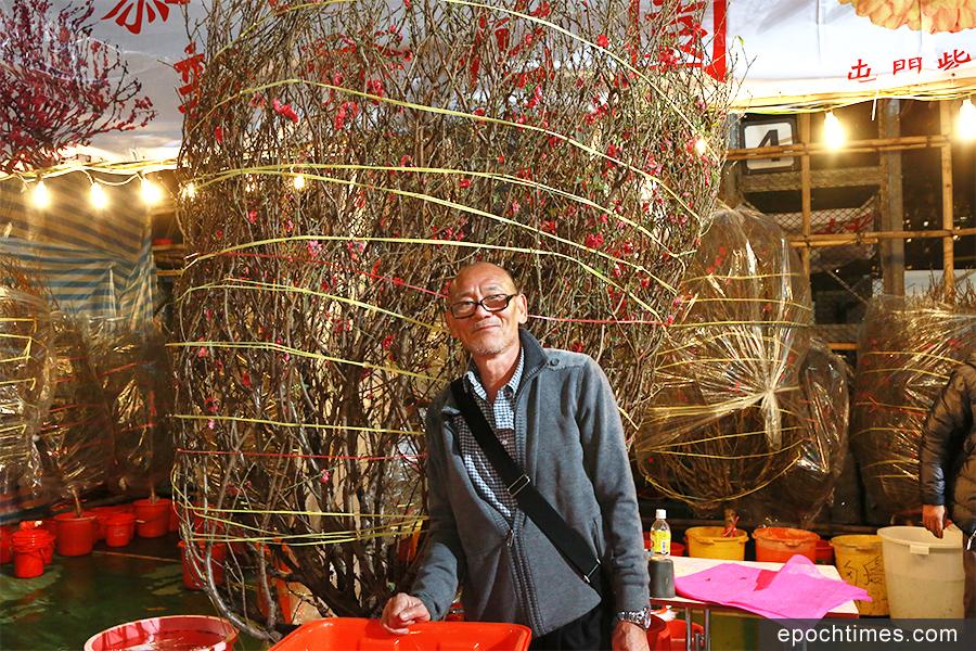 「桃花大王」劉海濤表示,今年天氣對花期有利,3000餘棵大型及中型桃花在年宵市場正式開鑼之日已告售罄。(陳仲明/大紀元)