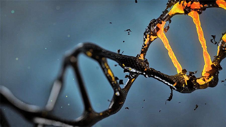 癌症新療法:激發癌細胞「自殺機制」