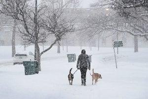極地渦旋一分為二 歐美嚴防低溫侵襲
