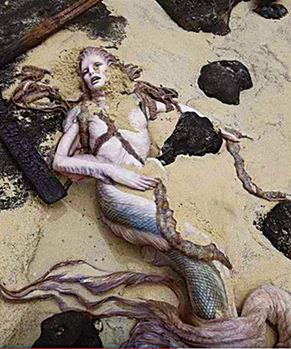網絡上流傳海濱發現的美人魚屍體。(視頻截圖)