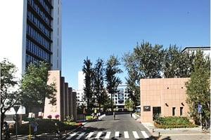 北京對共青團撥款減半