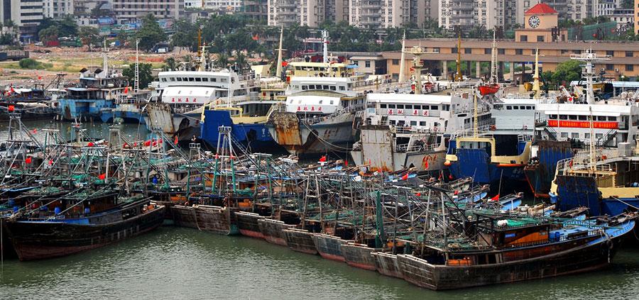 近海魚類耗竭 中共增遠洋捕撈加劇海上衝突