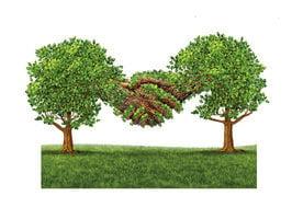 【大千世界】科學家深信:植物有意識和智能