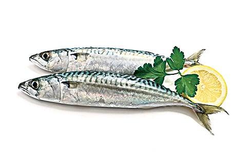 鯖魚因富含Omega-3脂肪酸,能抑制發炎,可減少頭痛發生的頻率。