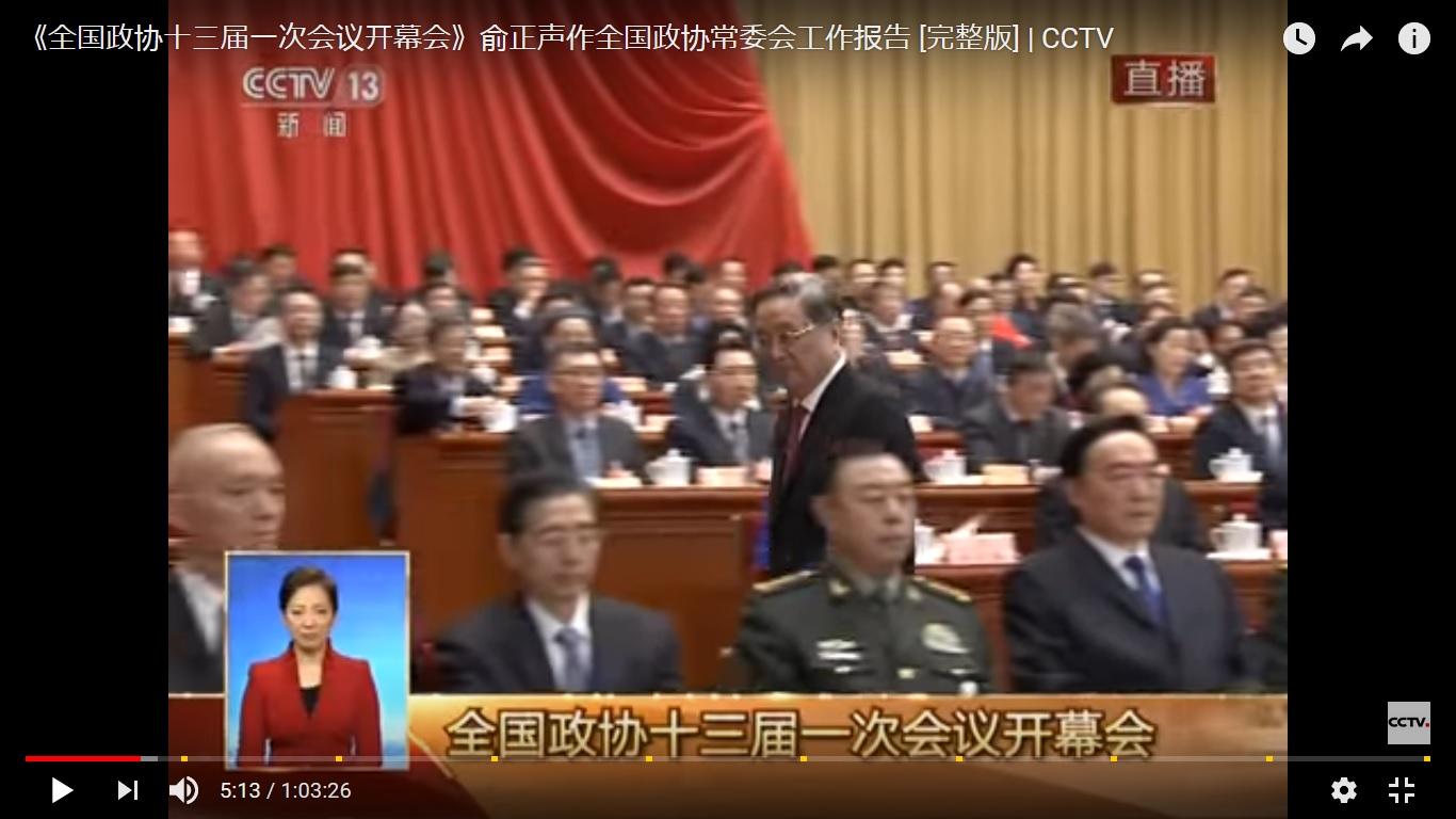 身著軍裝的中共國家軍委副主席范長龍出席政協會議。(視像擷圖)