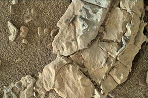 火星上發現生物化石證據