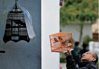 中國大陸把市場經濟關在社會主義計劃經濟的鳥籠中。(AFP)