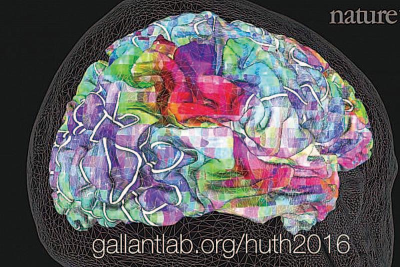 人腦功能團的3D影像。(《自然》視頻截圖)