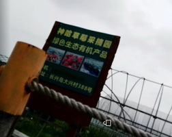 兩會期間三訪民攔人大代表車隊告狀 遭軟禁