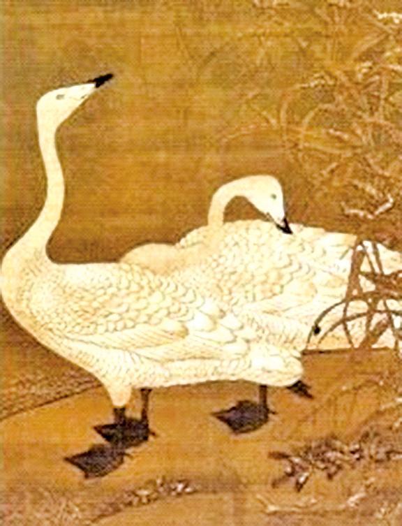 雁鳥有忠貞的秉性與重視群體的特質。人們對於愛情的忠貞,與夫妻相守的情義,又豈能不如雁鳥呢?(台北國立故宮博物院)
