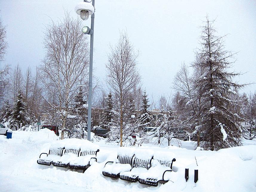 費爾班克斯市區的公園在冬季雪深至小腿,整個公園被雪覆蓋。(徐曼沅/大紀元)