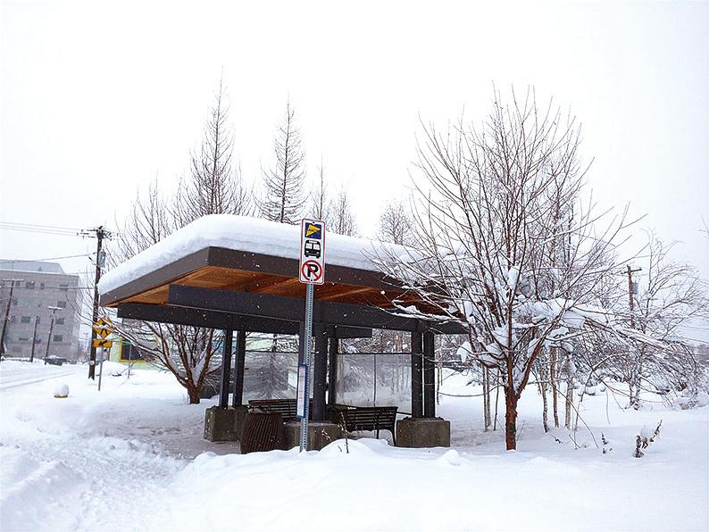 費爾班克斯的公車很準時,雪已經淹沒了公車站,乘客必須站在路邊等候。(徐曼沅/大紀元)