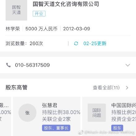 張慧君為國智天道文化諮詢有限公司第二大股東,持股比例為38%。(網頁擷圖)