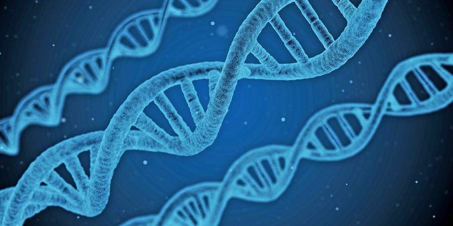 分子生物學:進化論是錯誤假想